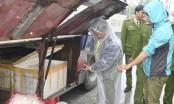 Thừa Thiên Huế: Phát hiện 200kg da heo hôi thối