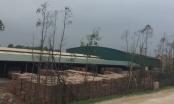 """Bắc Ninh: Nhà máy sản xuất gạch """"bức tử"""" môi trường, người dân gửi đơn kêu cứu?"""