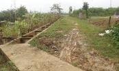 Thanh tra tỉnh Nghệ An bóc trần những sai phạm tại dự án hơn 80 tỉ đồng
