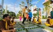 Rừng hoa mai trong Lễ hội Mai vàng sắc xuân tại Sun World Danang Wonders
