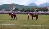 Hà Giang: Tổ chức giải đua ngựa huyện Vị Xuyên lần thứ nhất năm 2018