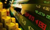 Slide - Điểm tin thị trường: 500 người mắc lừa khi đổ hơn 8 triệu USD vào sàn vàng ảo