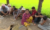 Kiên Giang: Bắt quả tang các con bạc đang sát phạt dưới hình thức đá gà, thu giữ gần 200 triệu đồng