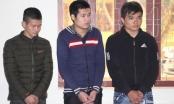 Nghệ An: Gần 17 năm tù cho 3 tên yêu râu xanh tuổi teen