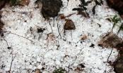 Hà Giang: Mưa đá bất ngờ xuất hiện tại huyện Mèo Vạc