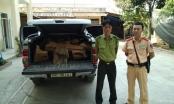 Bắt xe bán tải chở nửa tấn gỗ Bách Xanh lậu đi tiêu thụ