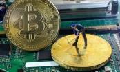 Quảng Nam: Mất 240 triệu đồng vì đầu tư tiền ảo trên mạng xã hội