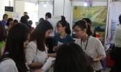Sinh viên ở TP HCM có cơ hội tìm được việc làm trước khi tốt nghiệp
