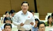 """Trưởng đoàn ĐBQH Đà Nẵng nêu ý kiến việc sử dụng đất từ """"lâu dài"""" thành """"50 năm"""""""