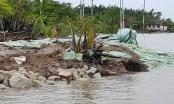 TP HCM: Làm rõ nguyên nhân vụ sạt lở nghiêm trọng bờ kè Tắc Sông Chà tại huyện Cần Giờ