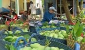 Giá trái cây ở ĐB sông Cửu Long giảm giá kỉ lục