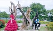 Sốc với trang phục váy kinh điển trong phim ca nhạc Người đẹp và quái vật