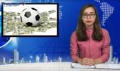 Bản tin pháp luật: Hàng loạt hệ lụy phát sinh trong mùa World Cup