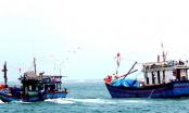 Kiên Giang: Giải cứu thành công 12 thanh niên bị cò ép làm ngư phủ