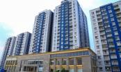 Slide Địa ốc: Chủ đầu tư chung cư Carina tuyên bố chấm dứt hỗ trợ cư dân