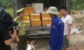 Quảng Ninh: Tạm giữ hơn 2 tấn cá khoai không rõ nguồn gốc xuất xứ