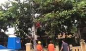 Huế: Một công nhân điện lực nghi bị điện giật chết trong khi đang xử lý điện