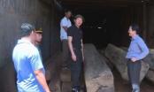 Đắk Lắk: Phát hiện số lượng lớn gỗ không rõ nguồn gốc trong xưởng