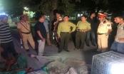Thừa Thiên Huế: Phát hiện hàng trăm cá thể rắn không rõ nguồn gốc xuất xứ