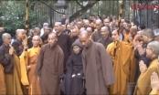 Thiền sư Thích Nhất Hạnh về lại mái chùa Từ Hiếu