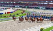 Hà Nội sẽ có hoạt động kinh doanh đặt cược đua ngựa