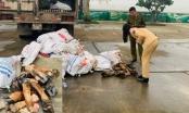Thanh Hóa: Bắt giữ hàng tấn chân trâu, bò bốc mùi hôi thối