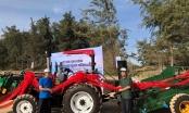 Tập đoàn Novaland góp phần gìn giữ môi trường sinh thái biển Phan Thiết – Bình Thuận