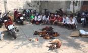 Kiên Giang: Bắt 17 đối tượng đang say sưa sát phạt dưới hình đá gà