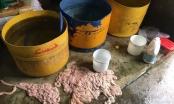 Phát hiện hàng trăm kg nội tạng bò chế biến trên nền nhà, gần bãi rác