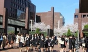 Nhật Bản điều tra vụ 700 du học sinh mất tích