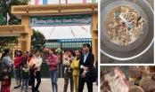 Tin nhanh - Vụ nhiễm sán lợn ở Bắc Ninh: Công ty cung cấp thực phẩm có nhiều sai phạm