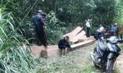 Khởi tố nhóm người dùng công nông đi phá rừng