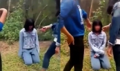 Nữ sinh lớp 7 ở Nghệ An bị bắt quỳ gối, tát liên tiếp vào mặt rồi quay clip tung lên mạng