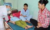 Hai học sinh ở Hà Giang bị chó cắn rách mặt