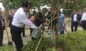 Nghệ An: Dâng hương và trồng cây đầu xuân tại khu mộ bà Hoàng Thị Loan