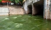 Chuyên gia Nhật Bản phản bác vụ xả nước Hồ Tây vào sông Tô Lịch