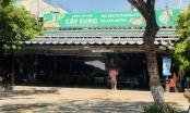 """Nghi án nhà hàng Cây Sung Đà Nẵng – bắt tay với tài xế taxi """"móc túi"""" du khách?"""