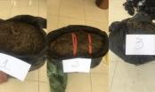 Chốt chống dịch Covid-19 bắt giữ vụ vận chuyển 19,4 kg cành, lá khô (nghi là cần sa) từ Campuchia về Việt Nam