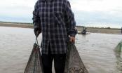 Các mẫu xét nghiệm nghêu tại Lộc Hà đảm bảo an toàn