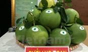 Ngày hội trái cây Lục Ngạn quảng bá các sản phẩm nông sản chủ lực