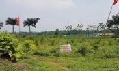 Kết luận thanh tra đất Đồng Tâm: Điều tra, xử lý nghiêm vi phạm, thu hồi đất quốc phòng bị lấn chiếm