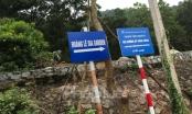 Vụ xẻ thịt rừng phòng hộ huyện Sóc Sơn: Xin điều chỉnh quy hoạch, có dấu hiệu lợi ích nhóm!