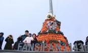 """Du khách đổ lên Fansipan chiêm ngưỡng """"cây thông Noel đẹp nhất châu Âu"""""""