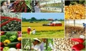 Hơn 120 thủ tục hành chính lĩnh vực nông nghiệp, nông thôn  được cắt giảm