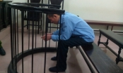 Án tù cho kẻ chuyên lừa tình, bán người vào động mại dâm Trung Quốc