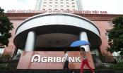 Hôm nay xét xử đại án tham nhũng tại Agribank chi nhánh Nam Hà Nội