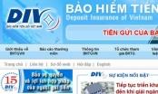 Sửa đổi Điều lệ về tổ chức và hoạt động của Bảo hiểm tiền gửi Việt Nam