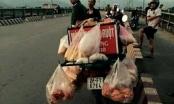 Người đàn ông bỏ lại xe bánh mì nhảy cầu tự vẫn: Không có dấu hiệu truy sát