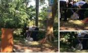 Hà Nội: Phát hiện người đàn ông tử vong bên gốc cây nghi do nắng nóng