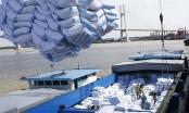 Xuất khẩu gạo Việt Nam tăng mạnh về chất